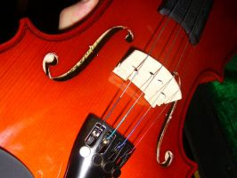 My Violin by nithilien