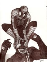 Spiderman and Venom by JeffyP