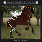 ES I Am Iron Man 2089 by NorthEast-Stables
