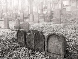 Old Jewish Cemetery by PaSt1978
