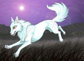 white wolf by Whodovoodoo