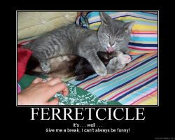 Ferretcicle Demotivator by Freyad-Dryden