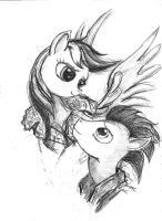 Dash and Soarin by TheLivingShadow