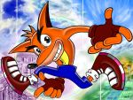 Crash Adventure by KTy-cat