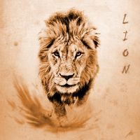 Lion by Deamonen
