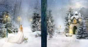 Back and frontpage Winter Efteling update by petronellavanree