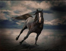 running solo by shadowsthyme
