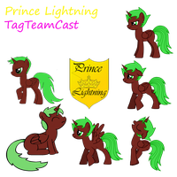 Prince Lightning Flicker's Character Sheet by TagTeamCast