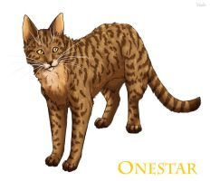 Onestar by Vialir