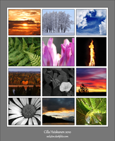 Nature collage by sed4tive