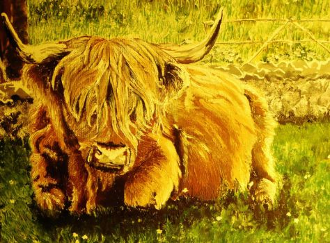 Highland Cow by SaerahHaytch