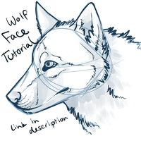 Wolf Face Video Tutorial by midelaye
