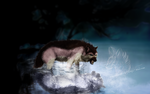 ART TRADE: It that betrays (Lycena) by wolf-fire