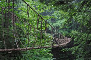 rope bridge by LucieG-Stock