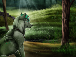 [CM] Forest Shade by Cylithren