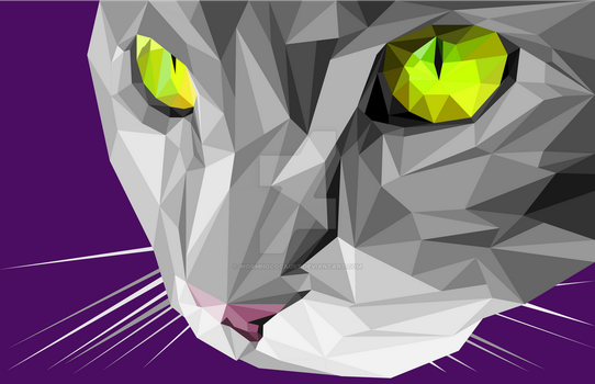 Polygonal Pussy by wormholocaust