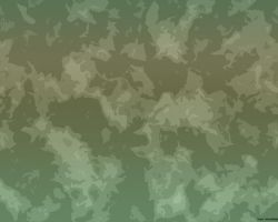Tropics Camouflage by snm-net