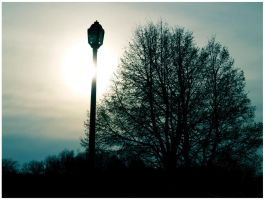 lamp-post sunset by prettyboyswearpink