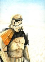 Stormtrooper by RiseleyComics