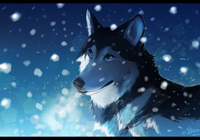 Alaskan Snow + Video draw by Klissie