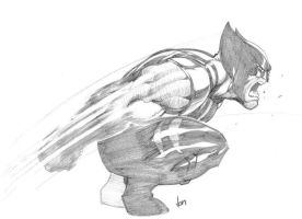 Wolvie Slashy by jpm1023