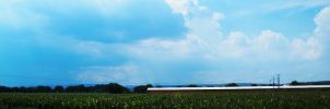 blue blue sky and some corn by DemensLab