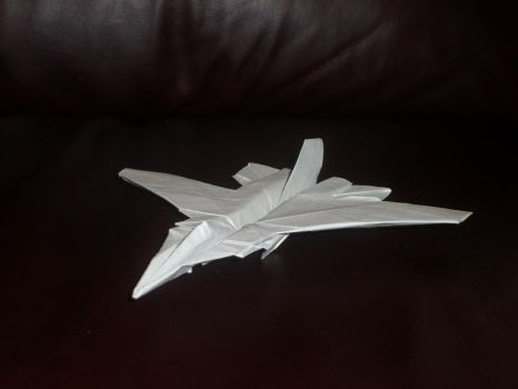 Jet Fighter by taerkitty