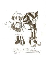 Becky and Shadow : Trade: by HirokoTheHedgehog