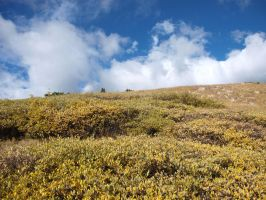 mountain hilltop 10 by fotophi