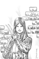 X-23 Pencils 1 by RodneyCJacobsen
