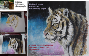 Winter Tiger painting process. by acrylicwildlife