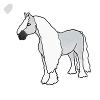 Gypsy vanner horse request WIP by Fourdd