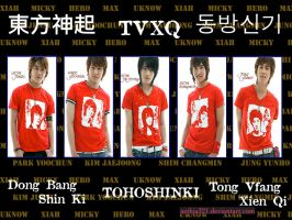 TVXQ: Words express love by aethia321