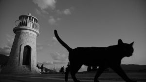 Lighthouse of Marmaris and Kitty by Navvyblue