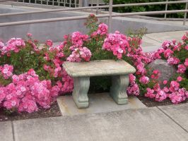 Garden bench 3 by NeverlandStock