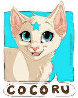 Cocoru Commission by Kamirah