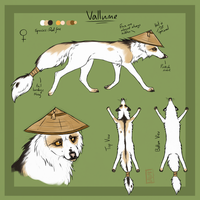 Vallume Reference Sheet by Vallume
