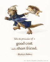 A Good Coat and Short Friend by nebester