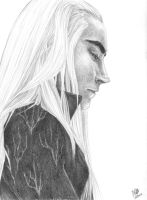 Lee Pace as King Thranduil by SixthIllusion