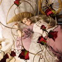 Sleeping Beauty by Julie-Chantal