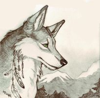 Wolf by Northern-god