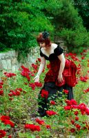 Rose red by Abarai-Hiromi