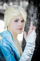 King Elsa Cosplay (Male Version - Elias) - Thaw by DakunCosplay