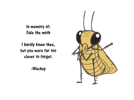 Dale The Moth by wachey