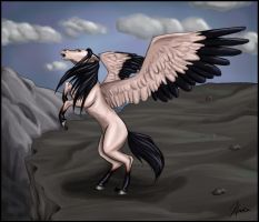 Pegasus by korde