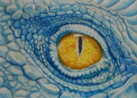ATC Dragon Eye by waughtercolors