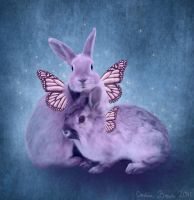 Rabbit Faeries by VioletDolphin