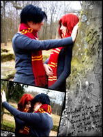 HP: Lily and James - Forever by TNTcos