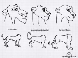 Lioness Sheets by dyb