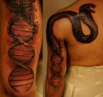 dna snake by strangeris